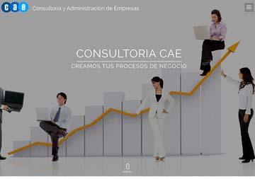 Consultoría CAE
